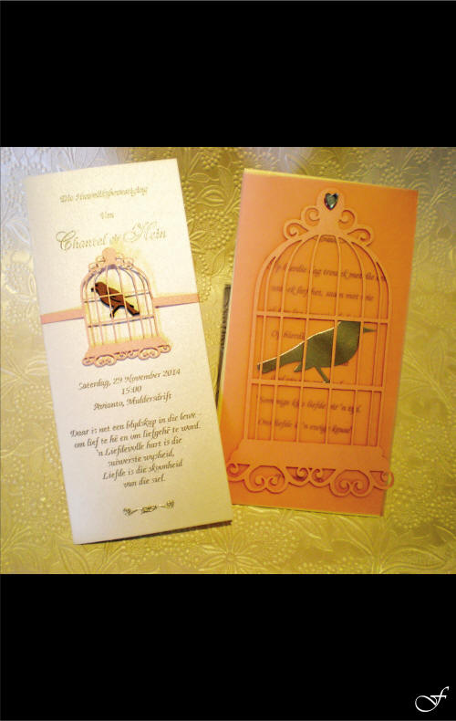Order of Service with Bird Cage by Fralenco